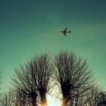 Fly ved søndermarken